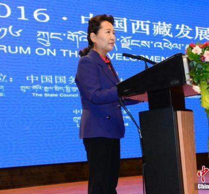 中国西藏发展论坛嘉宾论西藏创新发展