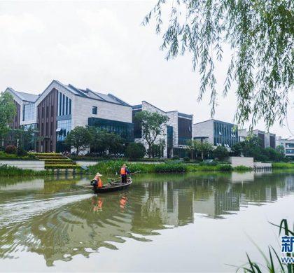 创新之城,杭州递出新名片