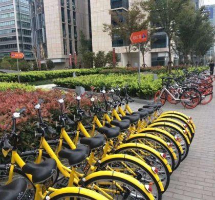 """中国共享单车迎""""顶层设计"""" 分享经济拒绝""""野蛮生长"""""""