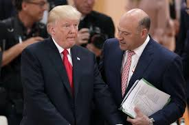 特朗普说耶伦和科恩是下任美联储主席热门人选