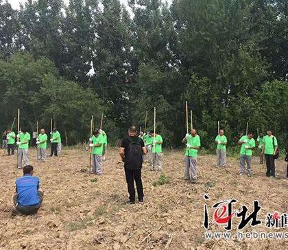 考古调查发现:雄安新区存在约18平方公里东周、汉代遗址群