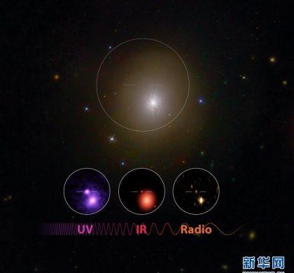 """引力波的""""黄金""""信号——关于中子星引力波的探测"""