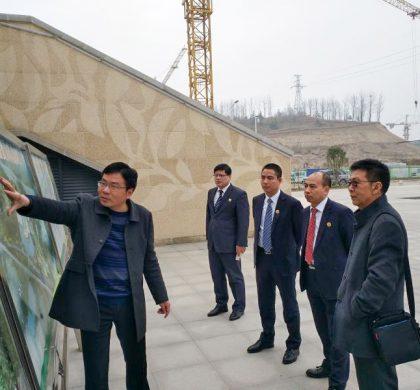 """新经济专家陈宗建:""""中国有机谷""""可打造成""""世界有机产业之都"""""""