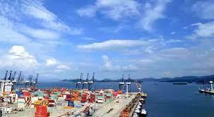 深去年出口总值1.63万亿元
