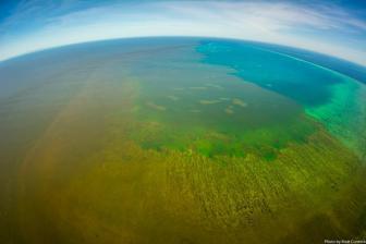 """新技术使在海水中获取氢和氧变得不再""""吃力"""""""