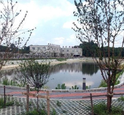 中国加快农村土地制度改革为乡村振兴增活力