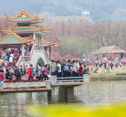 广东将建4条粤港澳大湾区文化遗产游径