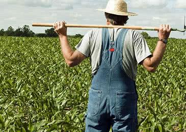 中国相关企业暂停新的美国农产品采购