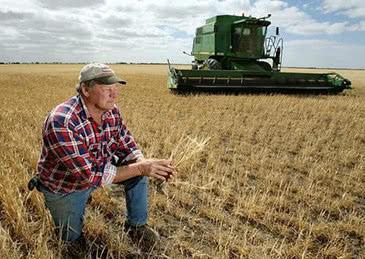 时评:言而无信害人害己 中企暂停农产品采购责任在美方