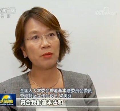 香港律师界:暴徒涉多项网络犯罪 打击有法可依