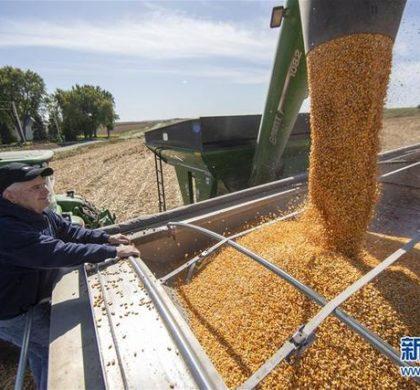 通讯:贸易战凸显美国农业发展隐忧