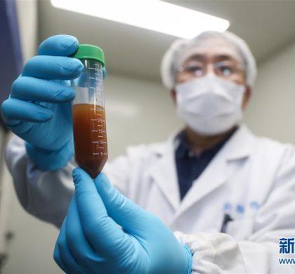 夜以继日攻关!中国疫苗研发为疫情防控斗争提供坚强支撑