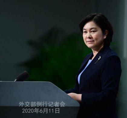 """中国外交部评""""哈佛论文"""":漏洞百出、粗制滥造"""