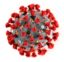 This illustration provided by the Centers for Disease Control and Prevention in January 2020 shows the 2019 Novel Coronavirus (2019-nCoV). This virus was identified as the cause of an outbreak of respiratory illness first detected in Wuhan, China. (Centers for Disease Control and Prevention via AP)