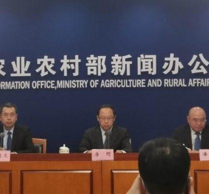 中国农业农村部:自美国进口大豆有望继续增加