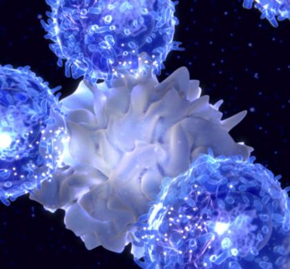 华人科学家领衔首个套细胞淋巴瘤(MCL)CAR-T疗法获FDA批准
