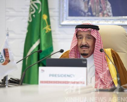 二十国集团领导人呼吁发展循环碳经济