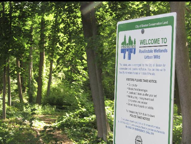 珍妮市长宣布成功扩大罗斯林代尔的保护土地和经济适用房机会